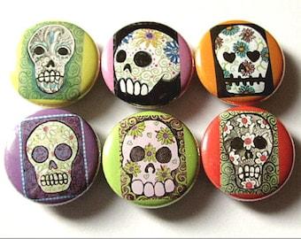 Fridge Magnet Set Sugar Skull Dia De Los Muertos Day of the Dead halloween skeleton calavera party favor stocking stuffer gift button pin