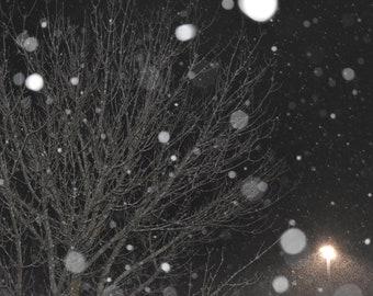 Snowy Night Wall Art