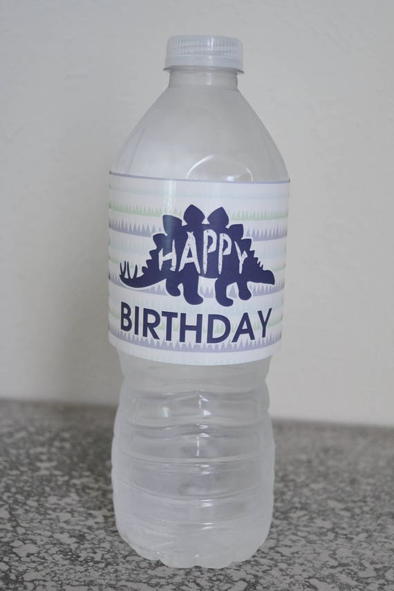 Dinosaur Birthday Party Water Bottle Labels