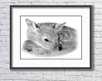 Original Fawn Graphite Drawing, Fawn Drawing, Baby Roe Deer Original Art, Wildlife Original Drawing, Original Pencil  Art, Original Wall Art