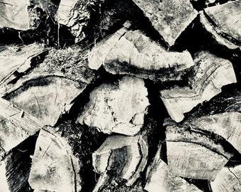 L'hiver du bois de chauffage bois #6 panoramiques hiver photo