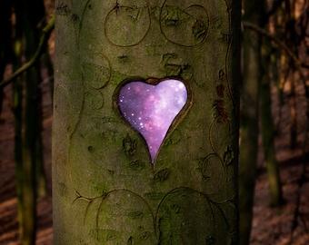 Surreal Tree Photo, Hearts Shaped, Universe, Stars, Fairytale Wall Art, Woods, Heart Tree, Trunk, Earth, Purple, Magical, Fantasy Home Decor