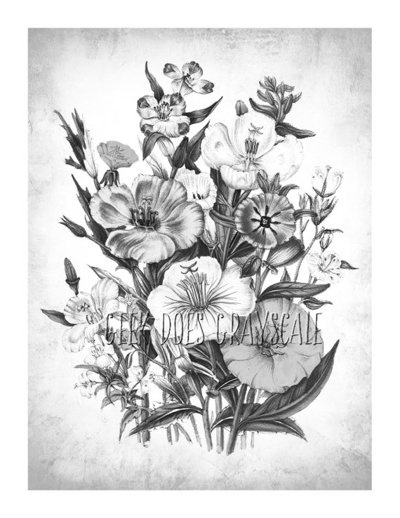 grayscale flowers grayscale coloring page adult coloring flowers grayscale digital download vintage illustration from geekdoesgrayscale on etsy