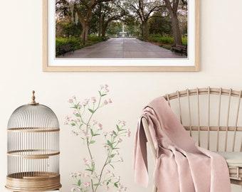 Savannah Forsyth Park Photo Print | Savannah Wall Art | Nature and Landscape Fine Art Photography | (5x7, 8x12, 12x18, 16x24, 20x30, 24x36)