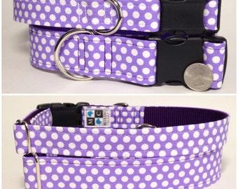 Purple and white polkadots dog collar