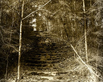 Wonderland Hotel Stone Staircase Steps Stairs Americana Art Photo Print Smoky Mountains National Park Sepia Tennessee Country