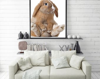 50%OFF,  Rabbit Print, Nursery Animal Print Wall Art Bunny Print Rabbit Poster Digital Baby Bunny Wall Decor Rabbit Wall