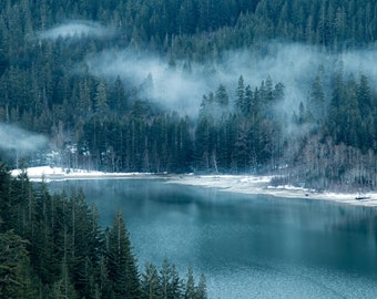 Foggy Forest in the North Cascades, Washington |  Pacific Northwest Photography | Print | Metal, Canvas, Lustre