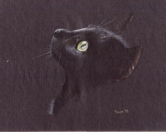 Black cat-Pastel pencil drawing-Original-Cat drawing