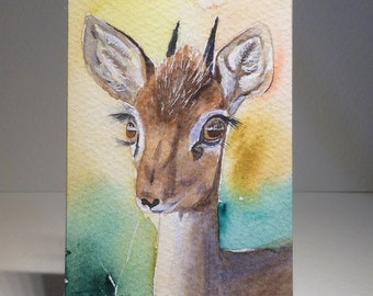 Aceo Original Watercolor Painting Antelope Dik-Dik.
