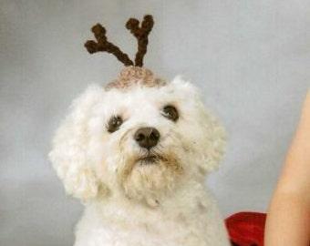 Dog hat - REINDEER - Christmas pet hat - Humorous - 2 to 20 lb pets
