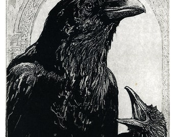 Mothers Day. Raven artwork , Raven, crow,  etching 5 inch x 7 inch 2011