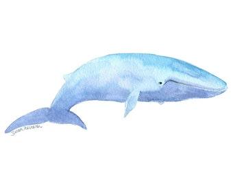 Blue Whale Watercolor Painting - 11 x 14 - Giclee Print - Fine Art Print Wall Art