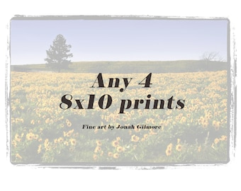 8 x 10 Fine Art Print set of 4 from Jonah Gilmore - Choose Any 4 images for the price of 3