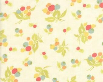 Moda Coney Island Quilt Fabric 1/2 Yard By Fig Tree & Co Ice Cream 20286 16