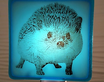 Hedgehog Baby Glass Night Light Fused Glass