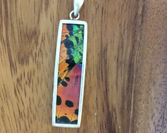 Real Butterfly Wing Pendant - XL Rectangle Madagascar Sunset Species, real moth, insect, friend, love, science, teacher, sterling silver