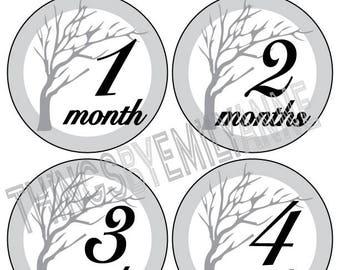 Instant Download Baby Milestone Stickers, Baby Month Stickers, 12 Growth +BONUS Bodysuit Stickers, Monthly Stickers, Grey Tree