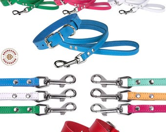Leather Dog Collar Leash Set Puppy Small Chrome Hardware Pink Blue Red