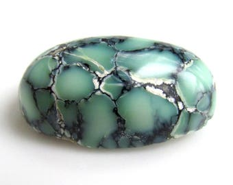 24.9ct Webbed Variscite Cabochon - 25x14mm - NEVADA Prince Mine Natural Variscite