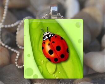 RED LADYBUG LEAF Ladybug Spring Summer Garden Glass Tile Pendant Necklace Keyring