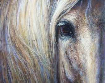 Horse Eye Large Canvas Art-Gray Horse Artwork- 'Aramis'