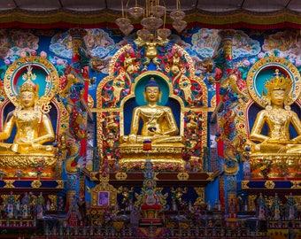 India Photography, Buddhist Temple, Wall Art, Large Print, Buddha Art Print, Rich Colors