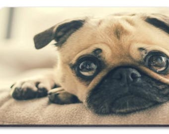 Pug close up Mousemat
