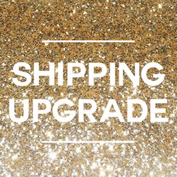 Upgrade to Priority Mail Shipping (Previous Purchased Item)