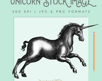 Vintage Unicorn Illustration Instant Download Digital printable picture clipart graphic transfer high resolution