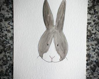 Dutch Rabbit Watercolor