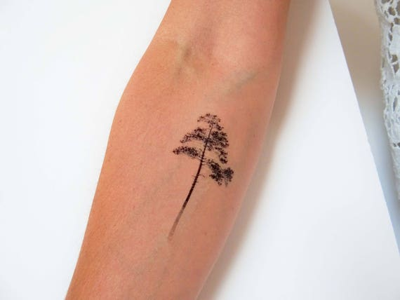 Pine tree temporary tattoos tree temporary tattoo ombre for Bath after tattoo