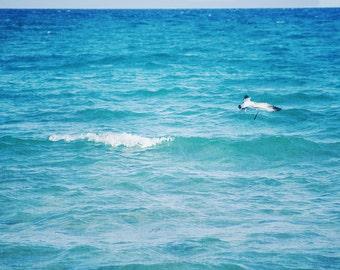 Blue Ocean Wall Art   Ocean Waves Art Print   Beach Wall Art Decor Print   Turquoise Sea + Seagull   Large Minimalist Beach House Decor Art