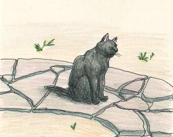 Cat original drawing - P011July2016