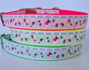 Firefly Neon Dog Collar - Ready to Ship!