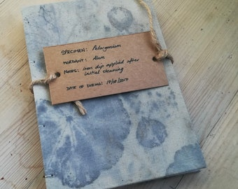 Pelargonium (an ecoprinted notebook)
