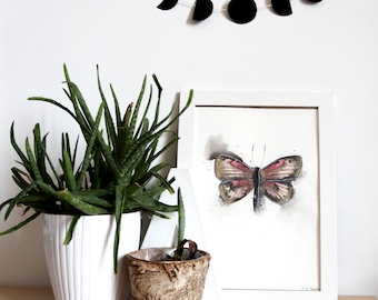 Original painting • • • insect Butterfly Butterfly