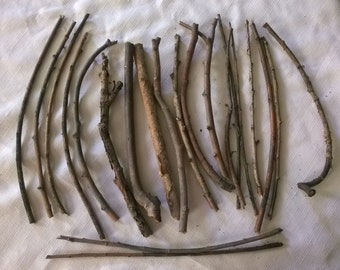 """Weeping Willow Sticks Twigs Lot #5-  1/8""""-5/8""""  Thick -21 Pieces 10""""-11.5"""" Long for Woodworking, Crafts, Natural Decorating, Ritual Tools"""