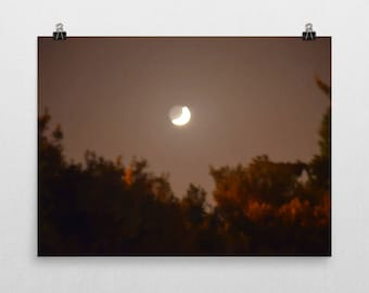 Moon And Woods Poster, Premium Semi-Gloss Photo Paper Poster