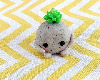 Green succulent pet rock / miniature cactus / Pet rock / home garden / cute pet rock / mini zen garden figure / mini gardens figure /