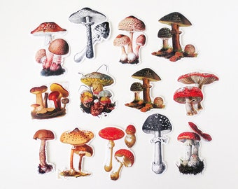 Vintage Mushroom Stickers Pack, Fungi Illustration Ephemera Sticker Set, Mushrooms, Planner, Scrapbook Stickers