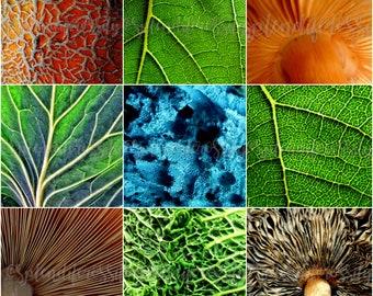 Texture Photography Prints