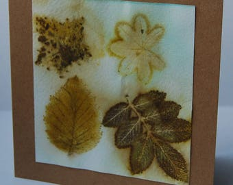 Naturally printed leaves from Shetland