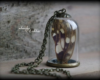 Antique Bronze glass dome chain with real Schmetterlingflügel