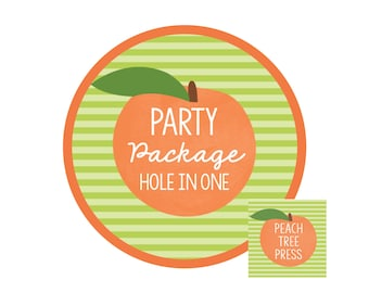 Party Package {Hole in ONE Golf Theme} Birthday Party Printables