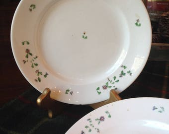 Vintage Irish Dinner Plates Hand painted Green Floral Irish Bone China Dessert Plates & Irish dinnerware   Etsy
