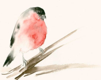 Fine Art Print from Original Watercolor Painting Bullfinch