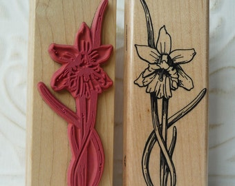 Daffodil Spring Flower rubber stamp from oldislandstamps