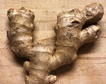 Fresh Ginger - Raw, Organic, Non-GMO
