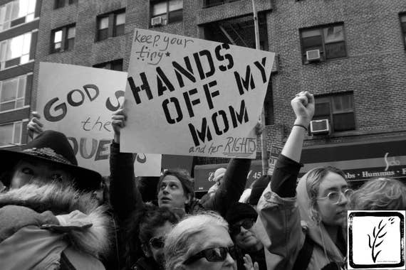 """Hands Off My mom,"" New york City Women's March, 2017."